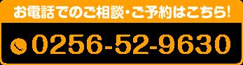 0256-52-9630
